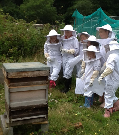educational-workshop-with-children-in-bee-suits